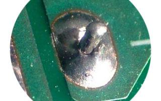 Иммерсионное олово