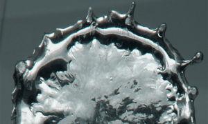 Аллотропные модификации олова